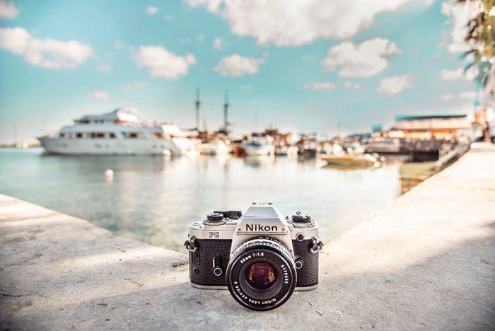 CanonとNikonのカメラの性能の違いをわかりやすく解説!